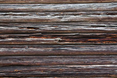 Rotten logs (background) Royalty Free Stock Photos