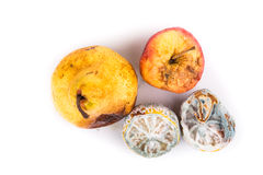 Rotten, moldy and decomposing lemon, apple, pear on white backgr Royalty Free Stock Photography
