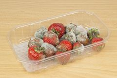 Rotten Mouldy Strawberries Stock Photo