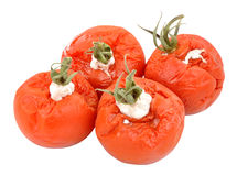 Rotten Mouldy Tomatoes Royalty Free Stock Photography