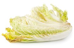 Rotten napa cabbage isolated. On white background stock photography