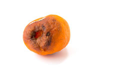 Rotten orange Stock Photo