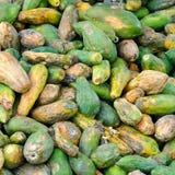 Rotten papayas Stock Photo