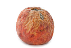 Rotten Peach stock photos