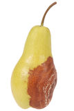 A rotten pear on white Stock Photography