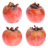 Rotten persimmons Stock Images