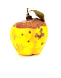 Rotten quince fruit. With leaf Royalty Free Stock Images