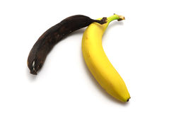 Rotten and ripe. Rotten and fresh bananas. Element of design Royalty Free Stock Image