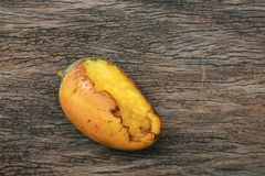 Rotten Ripe Mango Bitten By Insects Stock Photo
