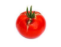Rotten tomatoes isolated Royalty Free Stock Images