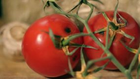 Rotten Tomatoes on Wooden Background. Close up stock footage