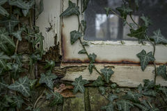 Rotten window frame Royalty Free Stock Image