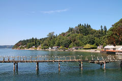 Rotten Wooden Pier Royalty Free Stock Images
