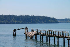 Rotten Wooden Pier Royalty Free Stock Photos