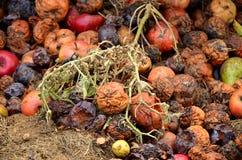 Rottend fruitcompost royalty-vrije stock fotografie