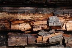 Rottend hout royalty-vrije stock foto
