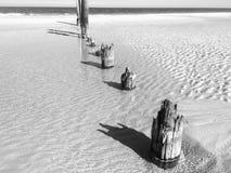 Rottende posten in het zand Royalty-vrije Stock Afbeeldingen