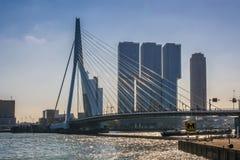 Rotterdam bro: de Erasmusbrug Arkivbilder