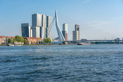 Rotterdam city cityscape skyline with Erasmus bridge and river. South Holland, Netherlands. Stock Images