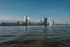Rotterdam city cityscape skyline with Erasmus bridge and river. South Holland, Netherlands. Royalty Free Stock Photo