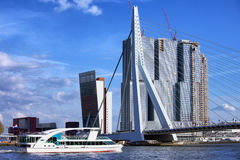Rotterdam City Downtown. City downtown of Rotterdam, river view, Erasmus Bridge (Dutch: Erasmusbrug), office and apartment skyscrapers in South Holland, the Royalty Free Stock Photos