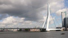 Rotterdam dall'acqua