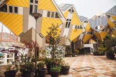 ROTTERDAM, DIE NIEDERLANDE - 30. APRIL 2016: Würfelhäuser vorbei entworfen Lizenzfreie Stockbilder