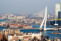 Rotterdam Erasmus bridge Stock Images