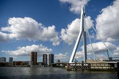 Rotterdam, the Erasmus Bridge. Located at the kop van Zuid. Stock Images