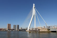 Rotterdam Erasmusbridge Royalty Free Stock Photo
