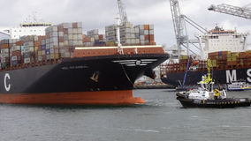 Rotterdam hamn Royaltyfria Bilder
