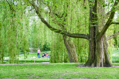 ROTTERDAM, Het Park and its visitors on 10 May 2015 Stock Photo