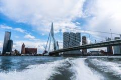 Rotterdam horisont med den Erasmus Bridge Kop van Zuid grannskapen, Nederländerna royaltyfri fotografi