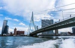 Rotterdam horisont med den Erasmus Bridge Kop van Zuid grannskapen, Nederländerna fotografering för bildbyråer