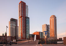 Rotterdam horisont med kontorsbyggnader Arkivfoto