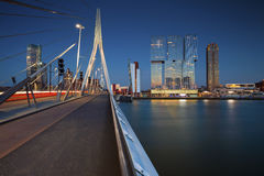 Rotterdam. Stock Photos