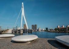 Rotterdam miasta pejzaż miejski z Erasmus mostem, Południowy Holandia, holandie Zdjęcie Stock