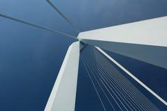 Rotterdam miasta pejzaż miejski z Erasmus mostem, Południowy Holandia, holandie Fotografia Stock