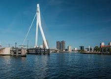 Rotterdam miasta pejzaż miejski z Erasmus mostem, Południowy Holandia, holandie Obraz Royalty Free