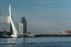 Rotterdam miasta pejzażu miejskiego linia horyzontu z Erasmus rzeką i mostem Południowy Holandia, holandie Zdjęcia Royalty Free