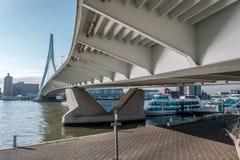 Rotterdam miasta pejzażu miejskiego linia horyzontu z Erasmus rzeką i mostem Południowy Holandia, holandie Fotografia Stock