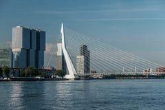 Rotterdam miasta pejzażu miejskiego linia horyzontu z Erasmus rzeką i mostem Południowy Holandia, holandie Zdjęcie Royalty Free