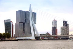 ROTTERDAM, THE NETHERLANDS - 18 AUGUST: Rotterdam is a city mode Royalty Free Stock Images