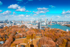 Rotterdam, Netherlands. City skyline on a beautiful sunny day Stock Photography