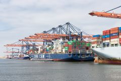Container terminal in Dutch harbor Rotterdam with cargo ships moored stock images