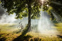 Free Rotterdam, Netherlands. People Relaxing On The Grass, Summer Afternoon In A City Park Stock Photos - 155443703