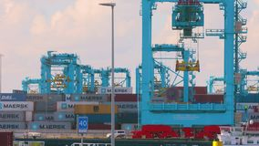 Stacking cargo containers. Rotterdam, The Netherlands - September 15, 2017: cranes unloading containers and organizing them at APM Terminals on Maasvlakte 2 stock footage