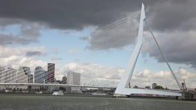 Rotterdam, Nideranda stock video footage