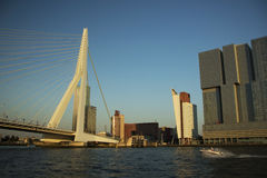 Rotterdam på solnedgången Royaltyfri Bild