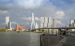 Rotterdam, Paesi Bassi - 9 maggio 2015: Erasmus Bridge con il grattacielo a Rotterdam fotografie stock libere da diritti